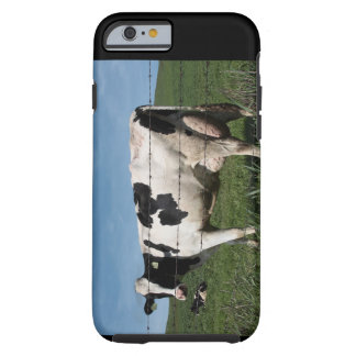 Cow Iphone Case for iPhone 6/6s 4.7 inch screen