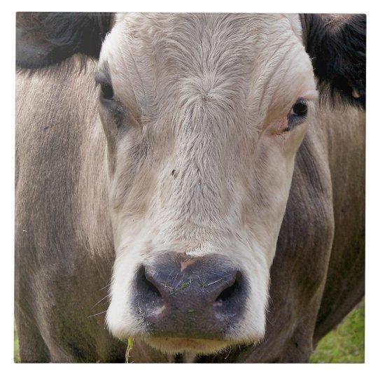 COW LARGE SQUARE TILE