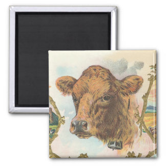 Cow 2 Inch Square Magnet
