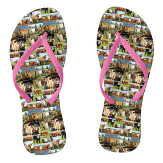 Cow Photo Collage, Flip Flops, Thongs