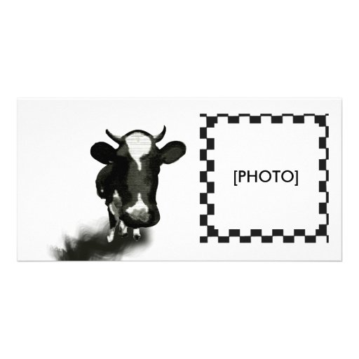 COW PHOTO CARD TEMPLATE