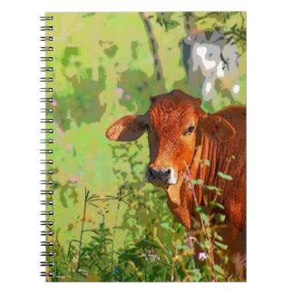COW QUEENSLAND AUSTRALIA ART NOTEBOOKS