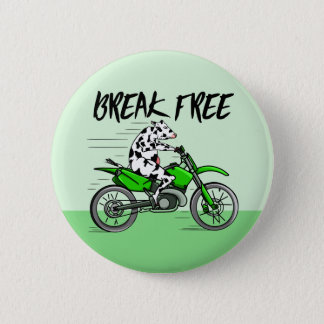 Cow riding a green motor cross bike 6 cm round badge