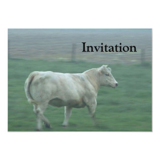 Cow Running Card