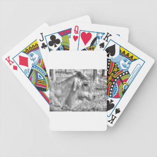 COW RURAL QUEENSLAND AUSTRALIA BICYCLE PLAYING CARDS