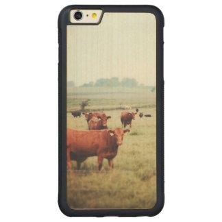 cow-scape