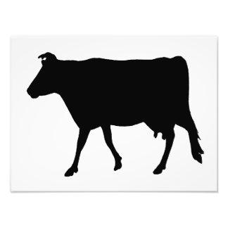 Cow Silhouette Art Photo