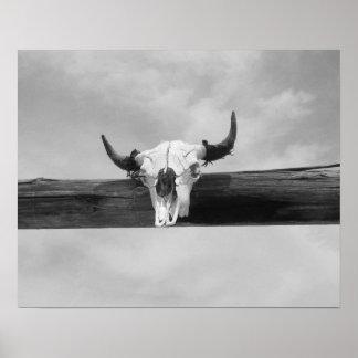 Cow Skull Black and White Poster
