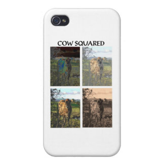 Cow squared iPhone 4 case