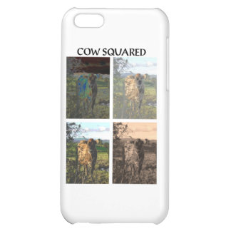 Cow squared iPhone 5C cover