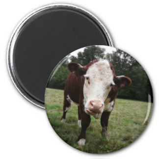 Cow Sticking Out Tongue 6 Cm Round Magnet