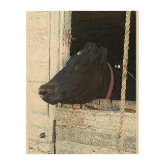 Cow through old barn door wood print