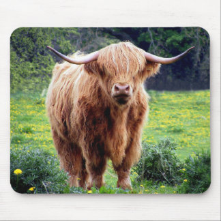 Cow with big horns beautiful nature scenery mouse pad