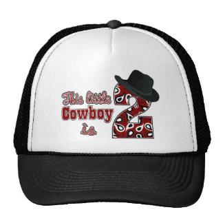 Cowboy 2nd Birthday Hat