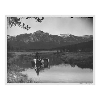 Cowboy and horse in a pond poster