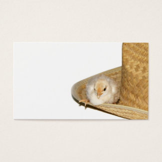 Cowboy baby chick profile card