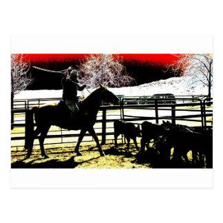 Cowboy glow postcard