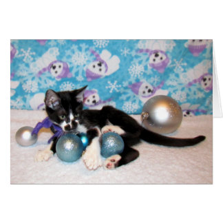 Cowboy, Kitten, Cat, Christmas, Rescue Card
