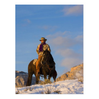 Cowboy on his Horse in the Snow Postcard