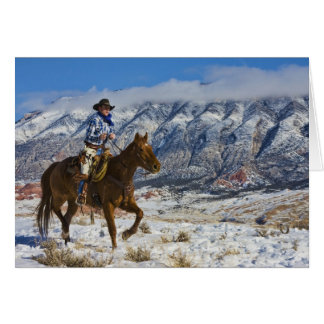 Cowboy on Horse wearing Leather Chaps 2 Greeting Card