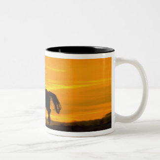 Cowboy riding in the Sunset with lariat Rope 2 Two-Tone Coffee Mug