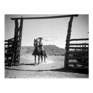 Cowboy roping postcard