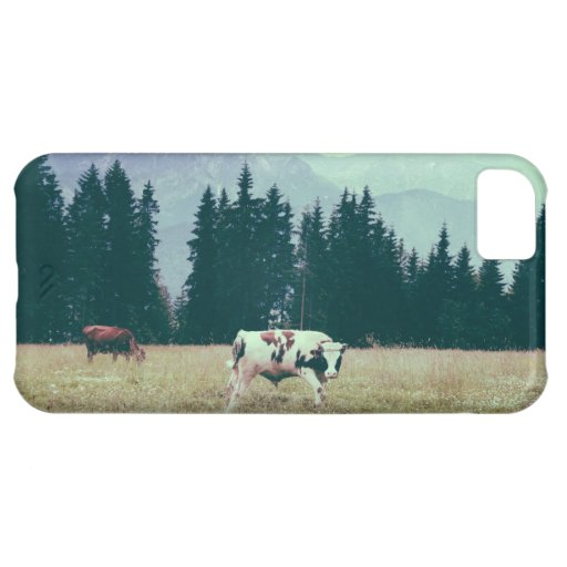 Cows and Mountains iPhone 5C Cases