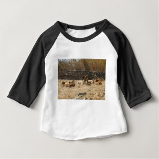 Cows Baby T-Shirt