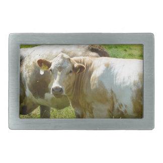 Cows Rectangular Belt Buckle