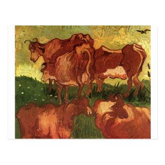 Cows by Vincent van Gogh Postcard