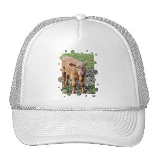 COWS CAP