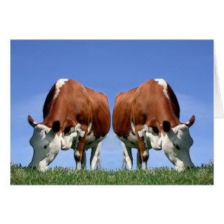 Cows Card