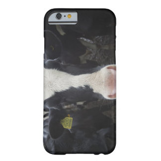 Cows Barely There iPhone 6 Case