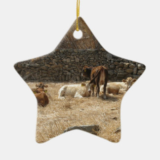 Cows Ceramic Star Decoration