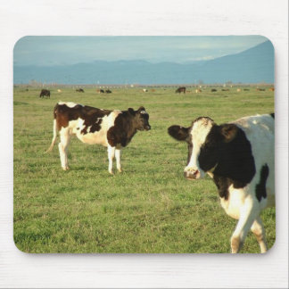 cows got cheese mouse pad