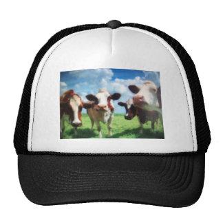 cows mesh hats