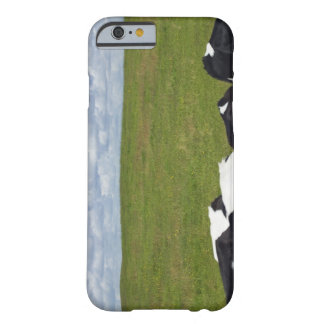 Cows in a pasture. iPhone 6 case