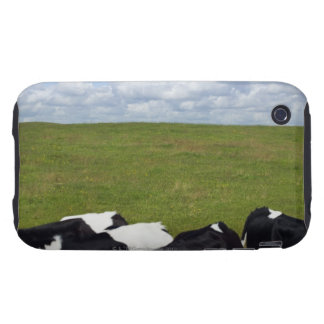 Cows in a pasture. tough iPhone 3 case