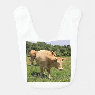 Cows in field, El Camino, Spain 2 Bib