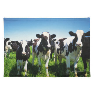 Cows in the field, Betsukai town, Hokkaido Placemat