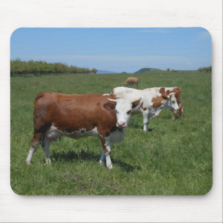 Cows In The Pasture Mouse Pad
