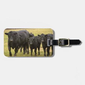 Cows in the rain bag tag