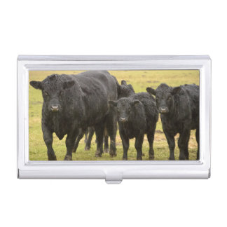 Cows in the rain business card holder