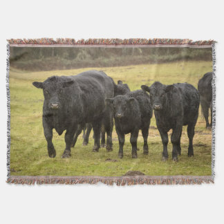 Cows in the rain throw blanket