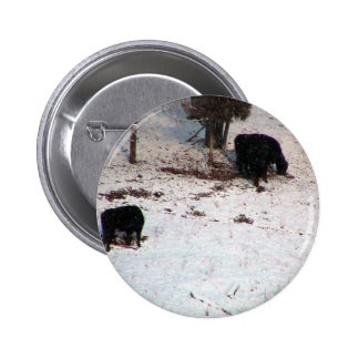 Cows In The Snow Fall Pinback Buttons