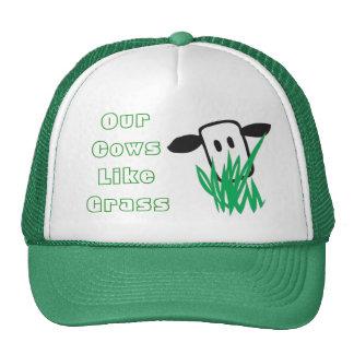 Cows Like Grass Mesh Hat