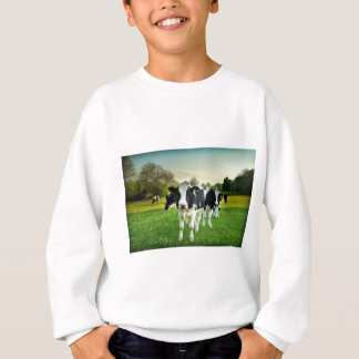 Cows love to stare sweatshirt