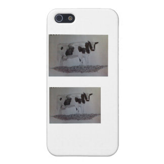 cows...moo iPhone 5/5S covers