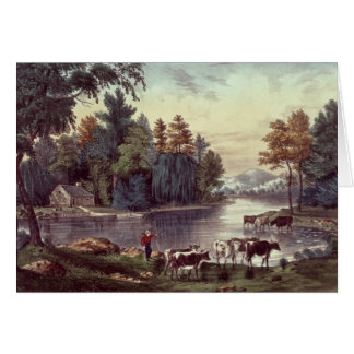 Cows on the Shore of a Lake Card