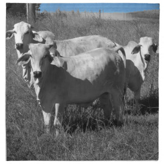 COWS QUEENSLAND AUSTRALIA NAPKIN